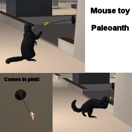 http://thumbs2.modthesims2.com/img/5/6/7/6/3/9/MTS2_Paleoanth_395684_Mousetoy.jpg