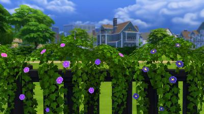Mod The Sims Vines For Fences Morning Glory And Seasons