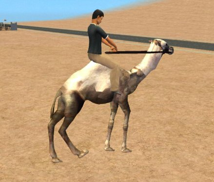 http://thumbs2.modthesims2.com/img/8/2/9/0/1/2/MTS2_rebecah_679508_Camel.jpg